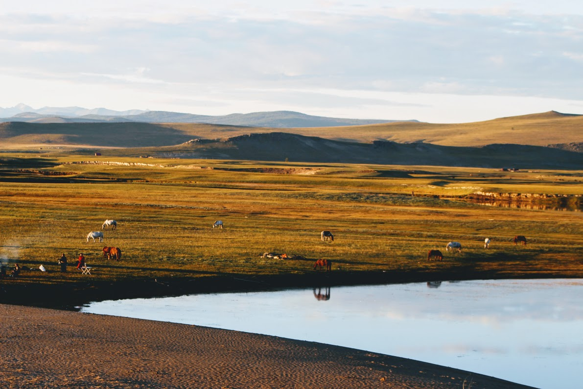 Horse Trails Mongolia Northern Mongolian Horse Trekking 2016, camping next to the lake of Khovsgol Aimag